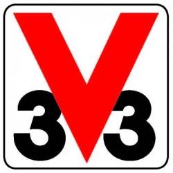 V33 (Франция)